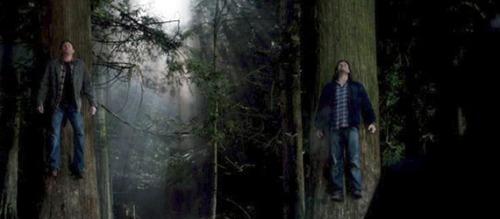supernatural-season-8-taxi-driver-bobby